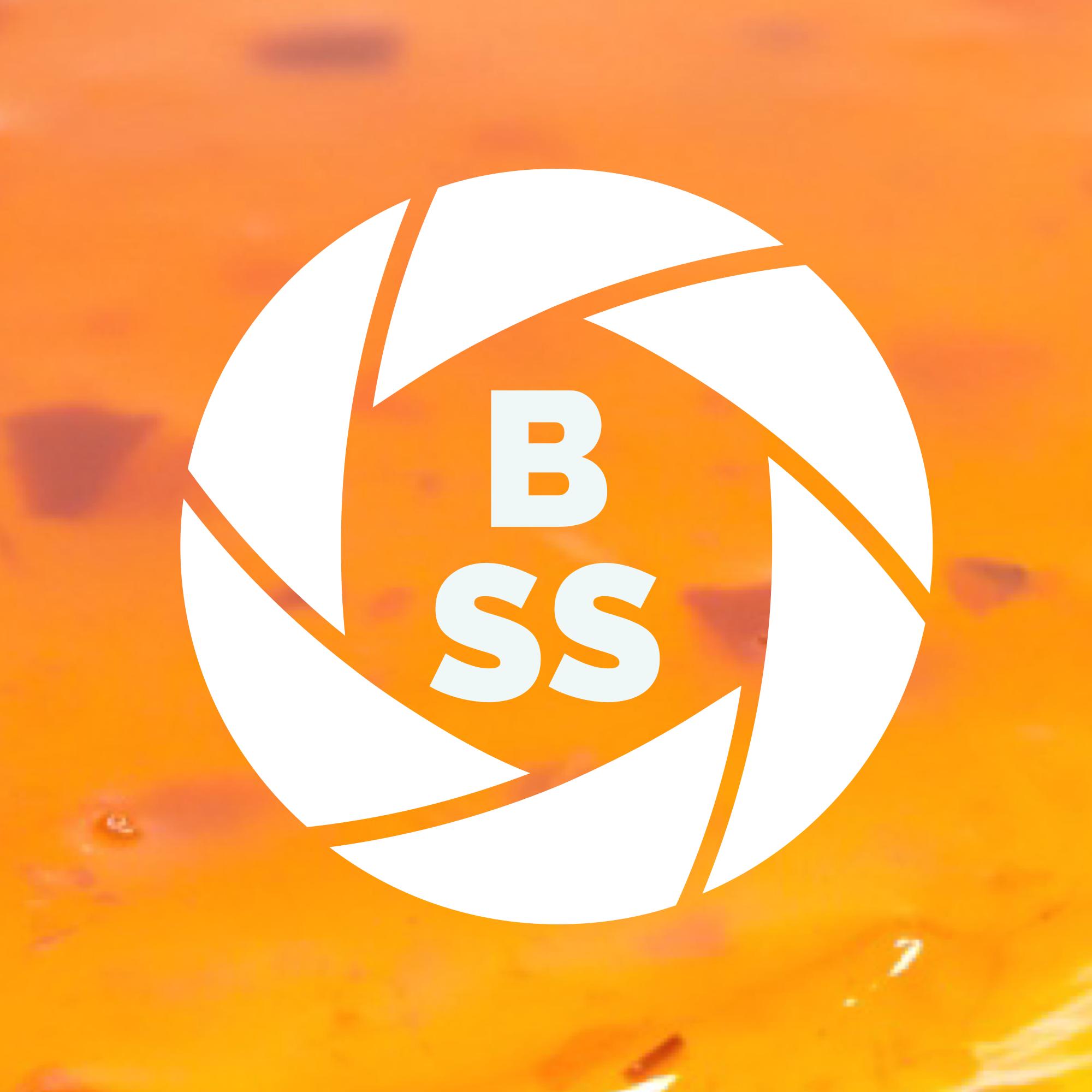 BlendeSuessSauer